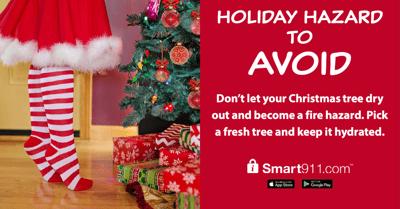 Holiday Hazard to Avoid-tree-2