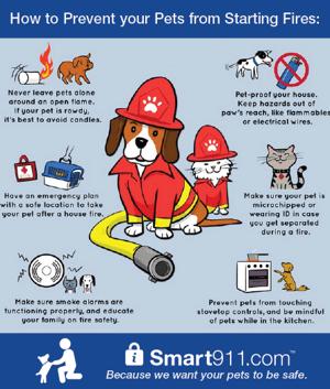 PetFireDay_Infographic